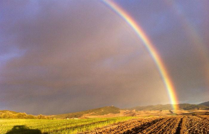 arco iris en una finca de cultivo