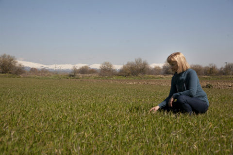 Mujer agricultora en un campo de cereal