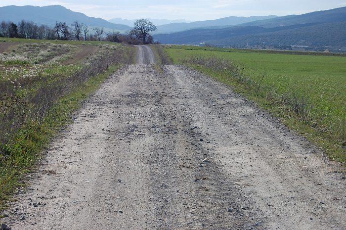Camino agrícola en mal estado