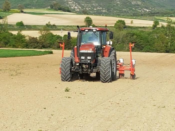 Tractor trabajando