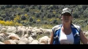 Imagen del video Ganaderas en red
