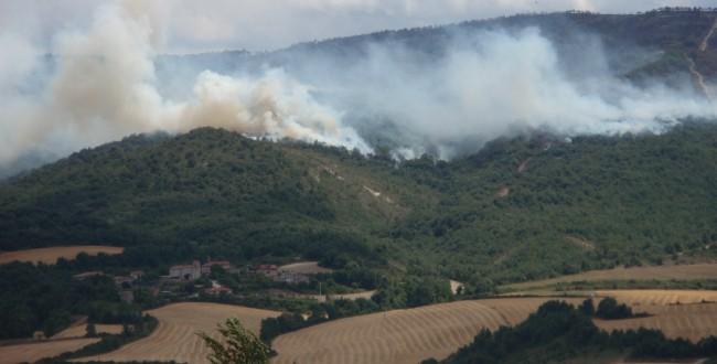 incendio junto a fincas agrícolas