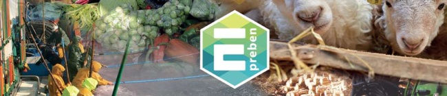 Logo del plan Preven