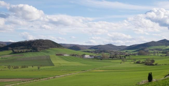 paisaje de fincas cultivadas