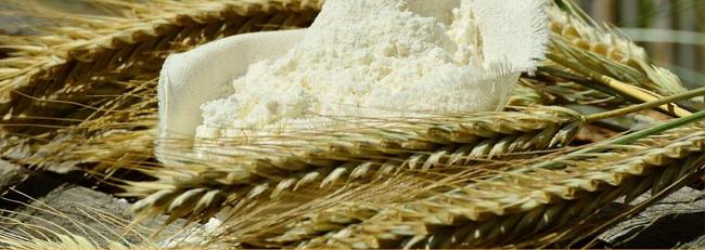 Espigas de trigo y harina
