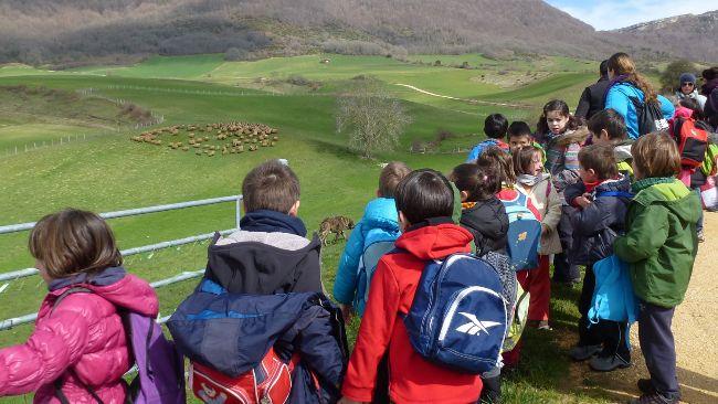 Niños en una visita escolar