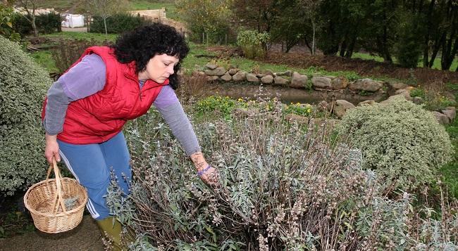 Mujer recogiendo plantas