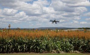 Un dron sobre una finca agrícola