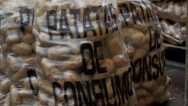 sacos de patata de consumo