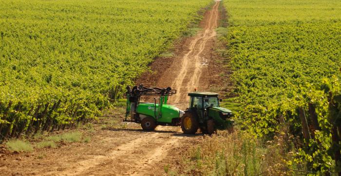 Aplicación de fitosanitarios en viña